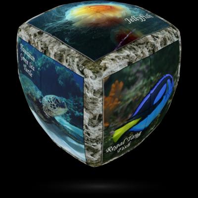 V-Cube sea world 2×2