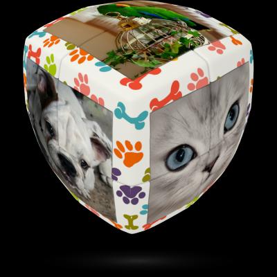 V-Cube pets 2×2